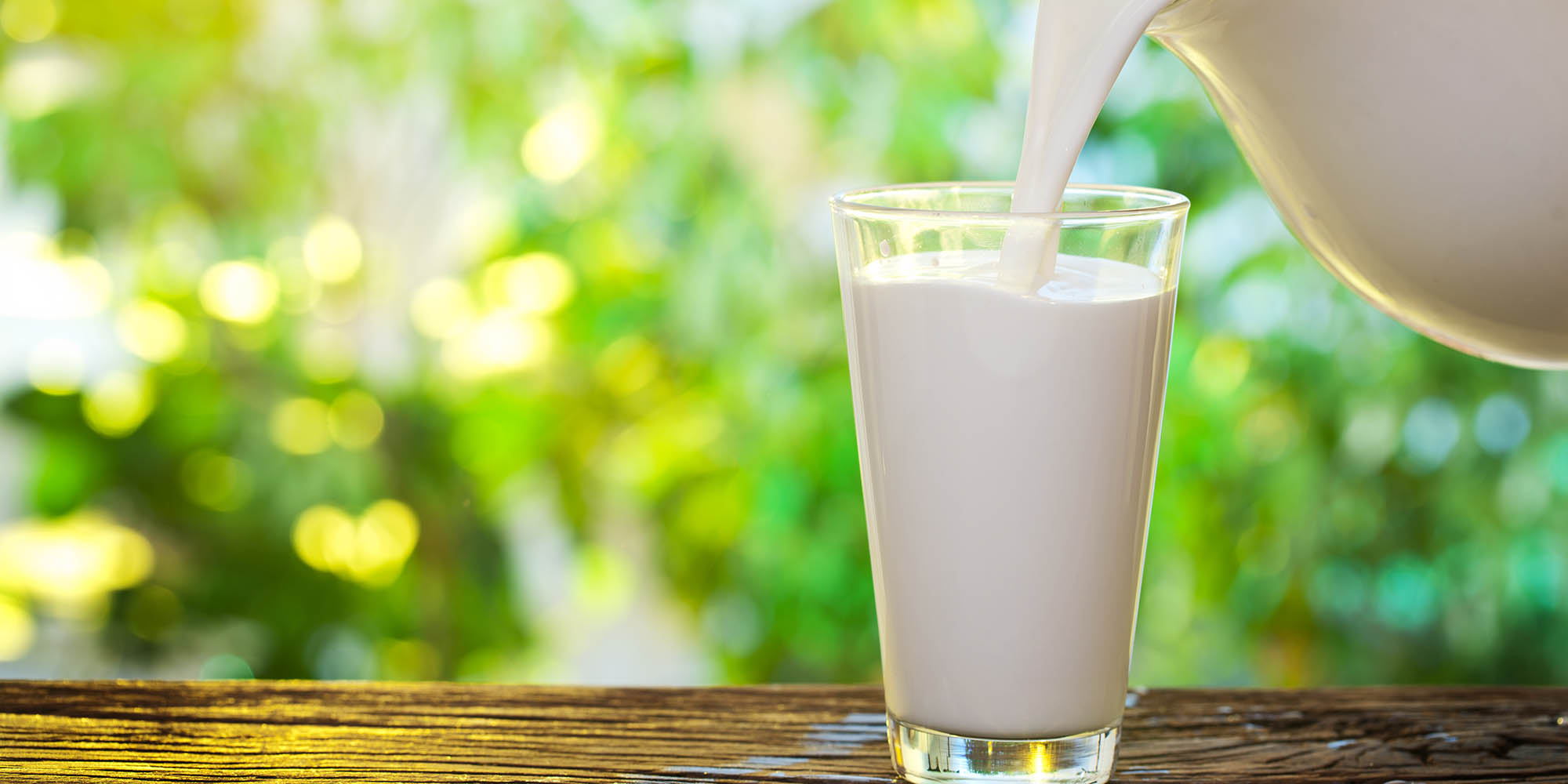 Organic Milk vs. Regular Milk: Is It Worth the Splurge?