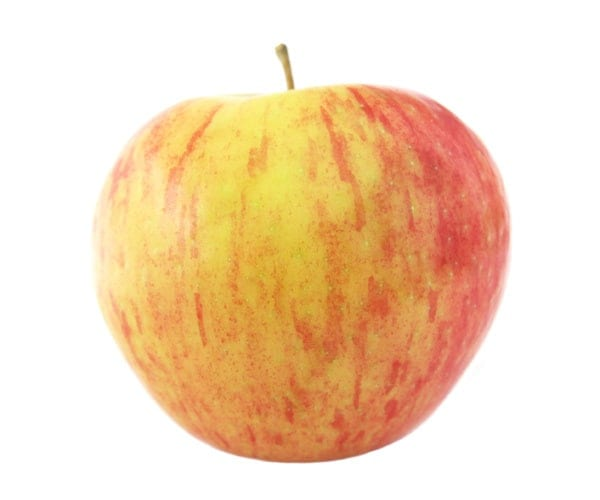 Apple Types - Honeycrisp