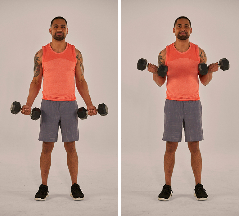 Dumbbell Biceps Curl - weightlifting for beginners