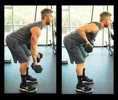 Biceps Workouts Exercises Bent Over Rows
