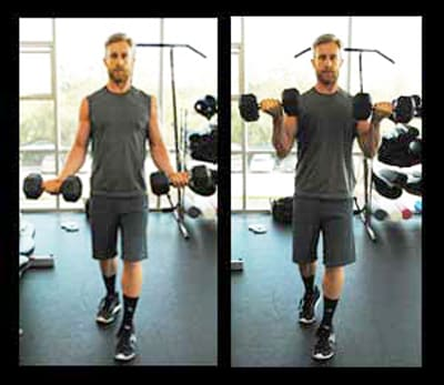 Biceps Workouts Exercises Standing Curl
