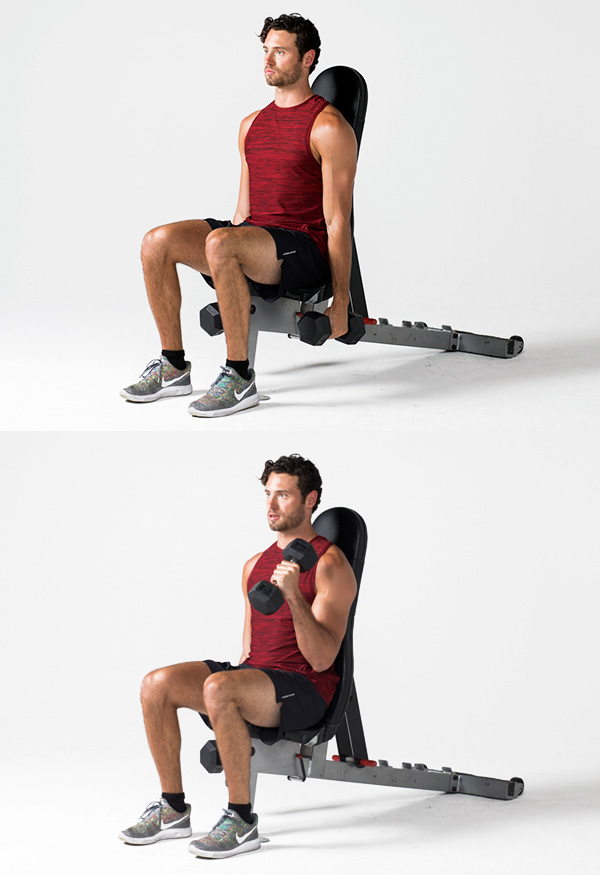 Hammer curl - Strength training workouts