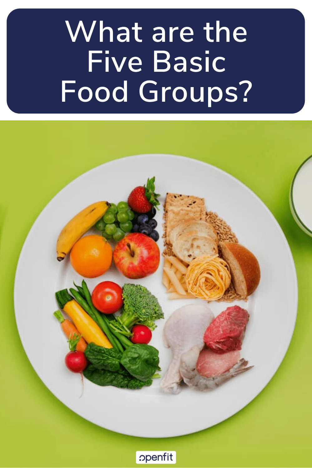 five basic food groups pin image