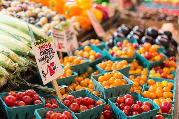 vegetarian, vegan, plant-based diet, flexitarian, pescatarian