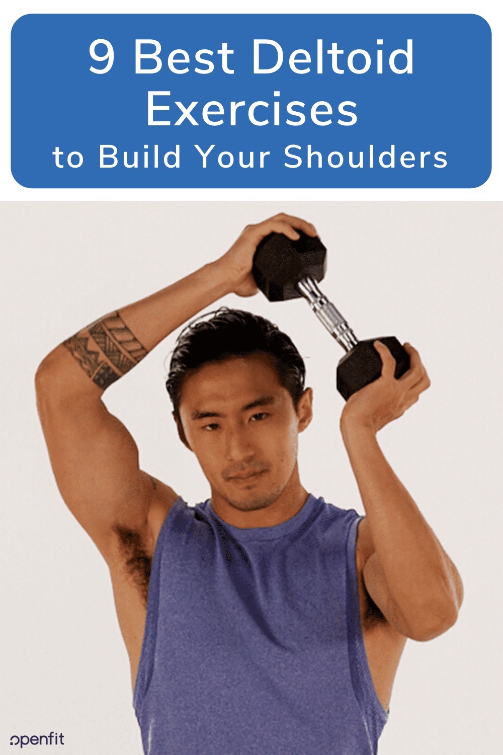 deltoid exercises pin