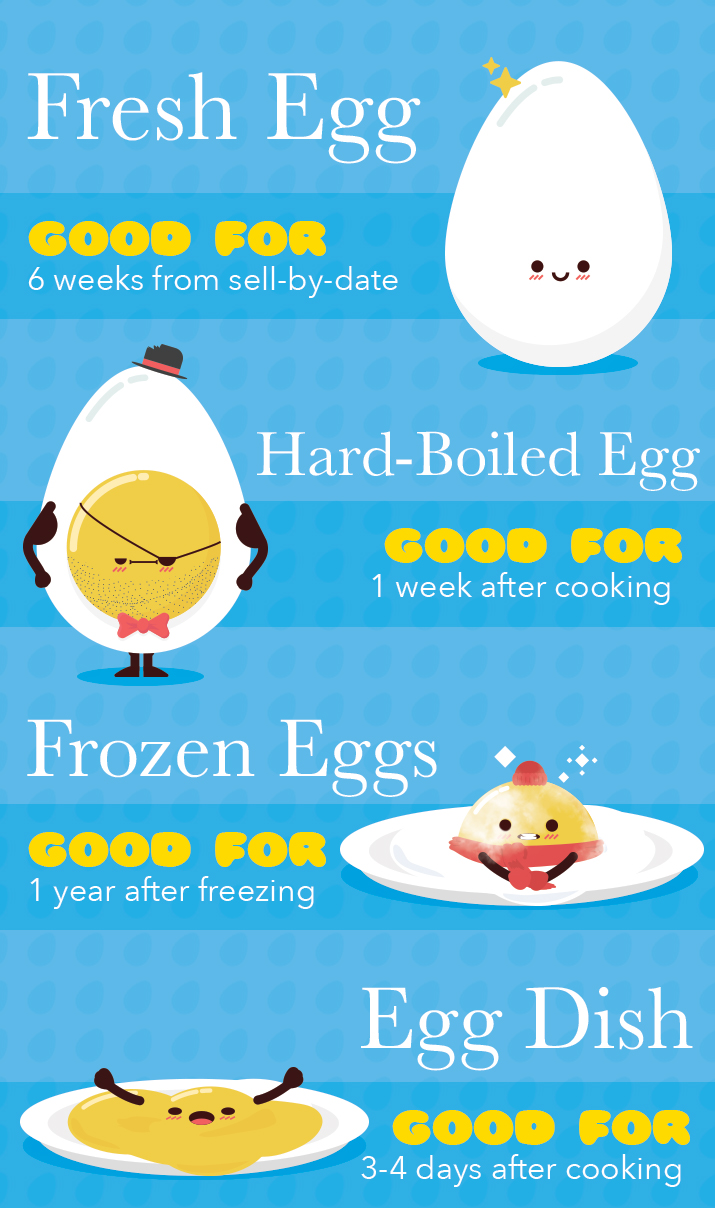 eggs nutrition facts, egg white nutrition facts, egg yolk nutrition