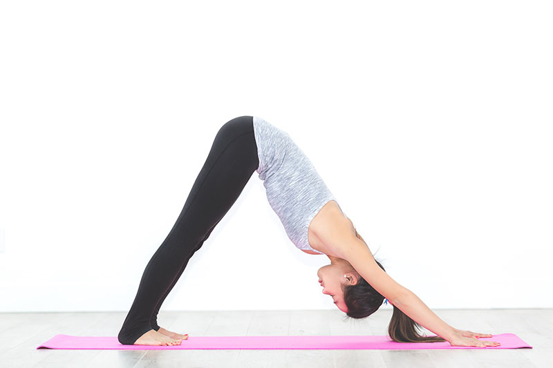 Vinyasa Yoga Sun Salutation - Downward Dog