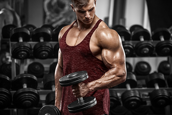 man curling dumbbell - strength training program