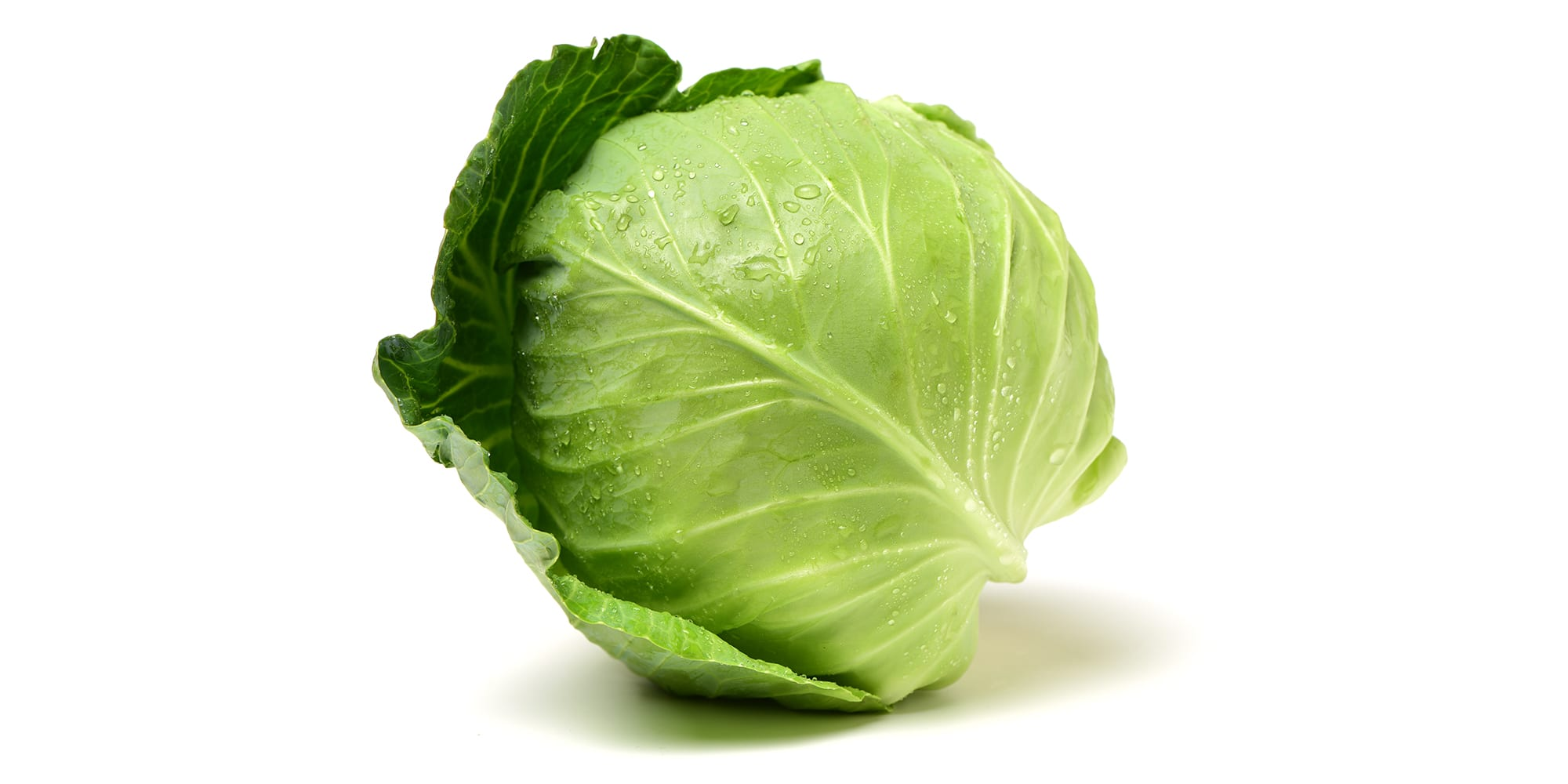 Can You Lose Weight on the Cabbage Soup Diet?