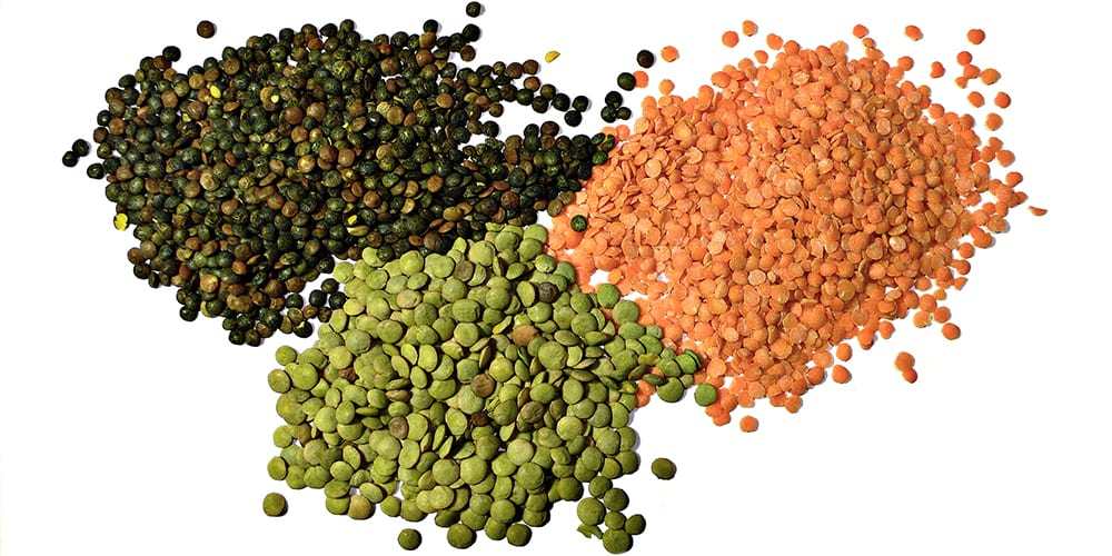 lentils | vegan protein sources