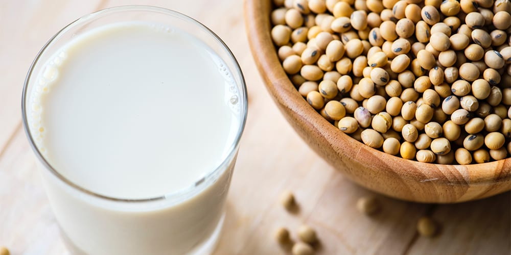 soy milk | vegan protein sources