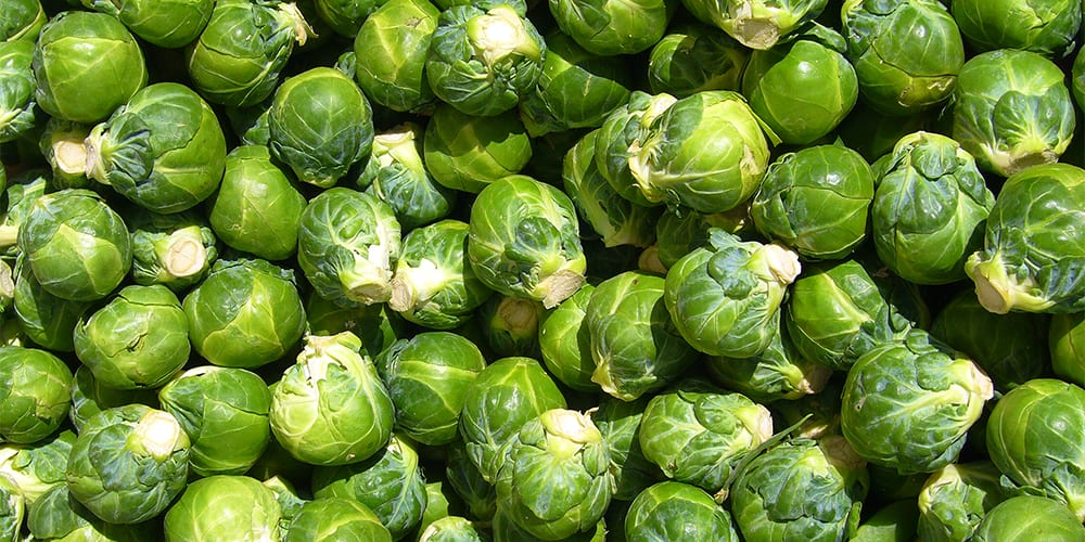 brussels sprouts | foods high in potassium