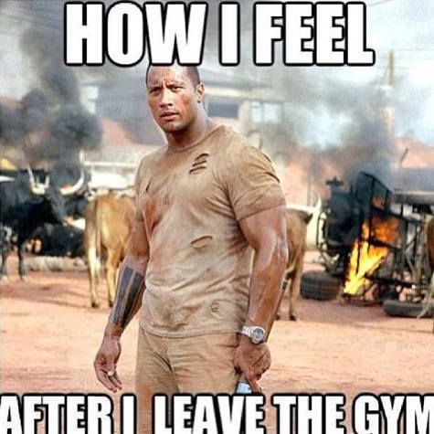 15 Hilarious Weight Loss Memes For Every Step Of Your Fitness Journey Openfit
