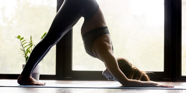 yoga-inversions-dolphin-pose