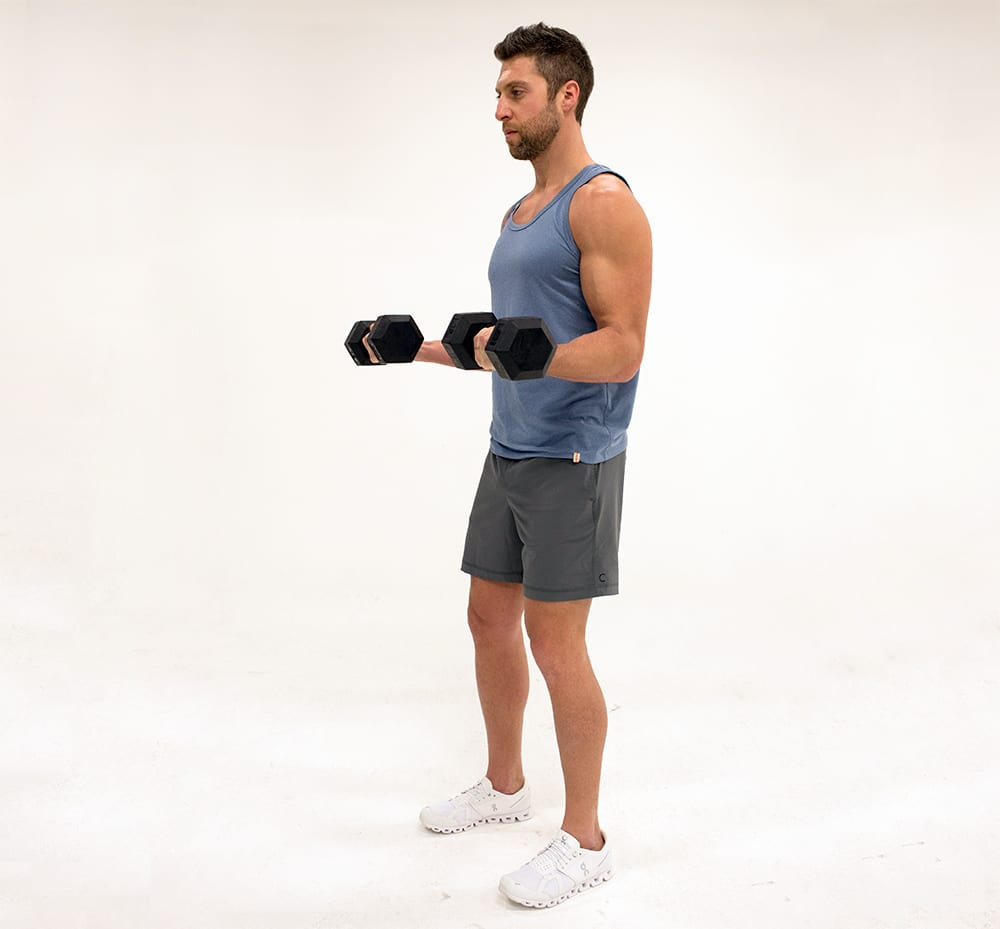 dumbbell curl with static hold isometric exercises