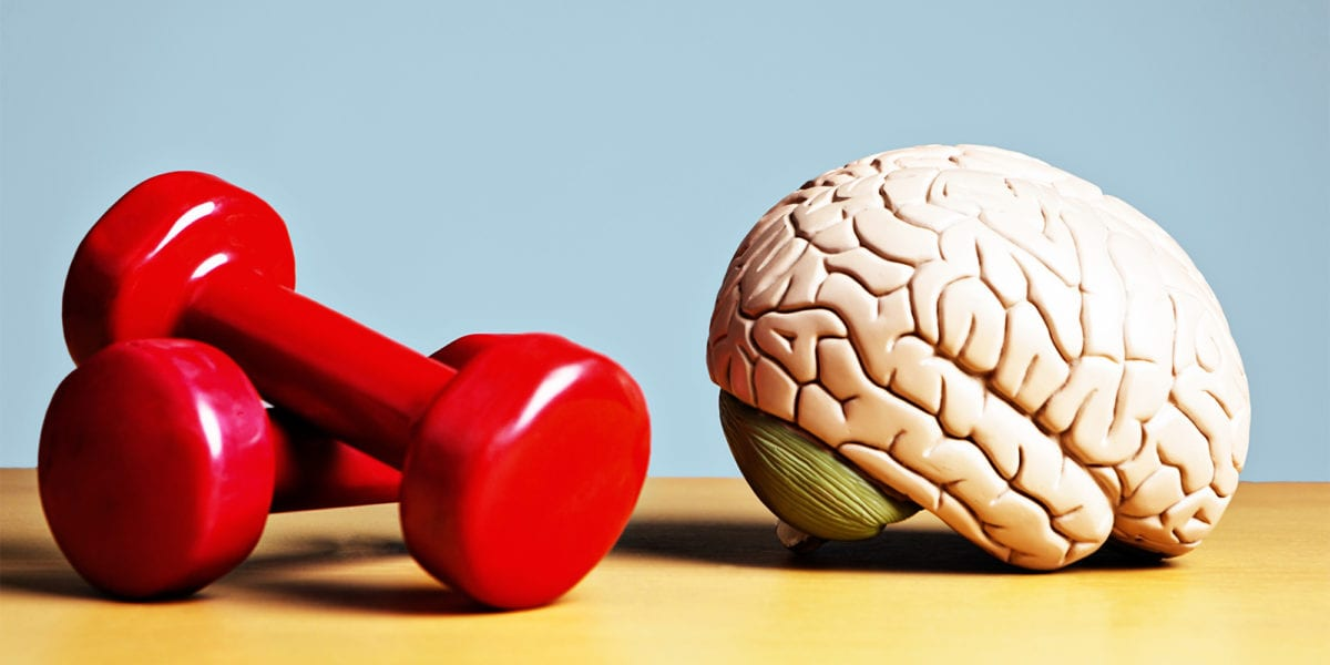 Does Working Out Make You Smarter?