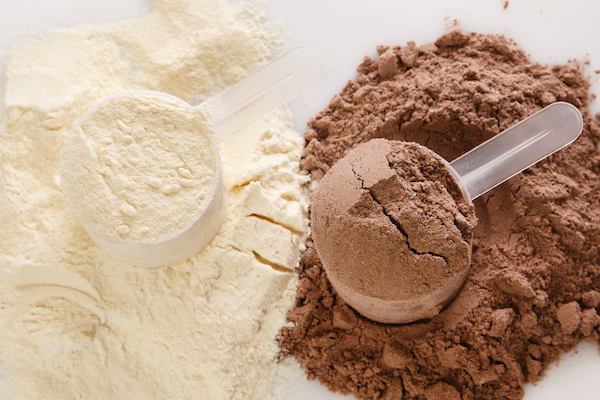 what is protein- protein powder