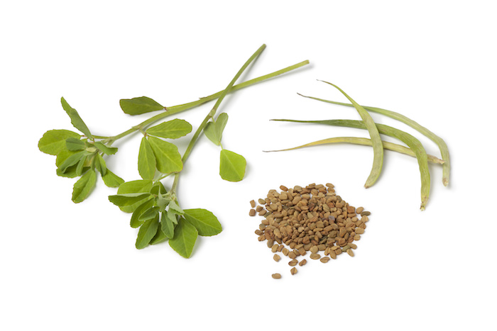 fenugreek- herbs for weight loss