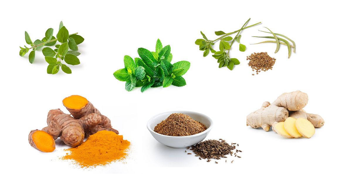 herbs and spice antioxidant foods