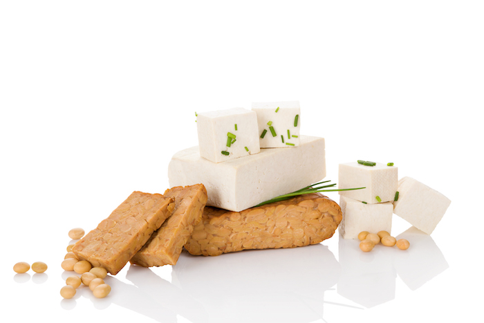 what is protein- tofu