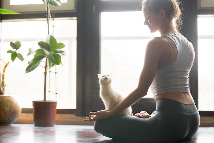 yoga- perfect posture