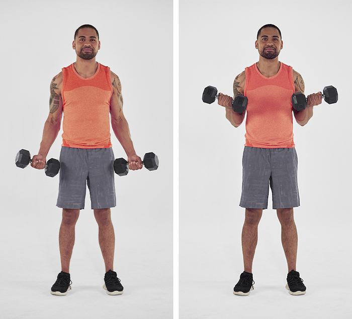 dumbbell bicep curl- tone arms