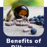 benefits of bilberry