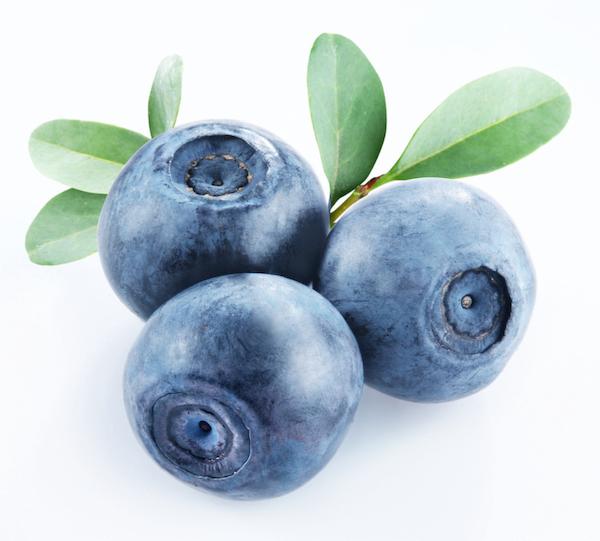 bilberry benefits- fruit  - bilberry fruit