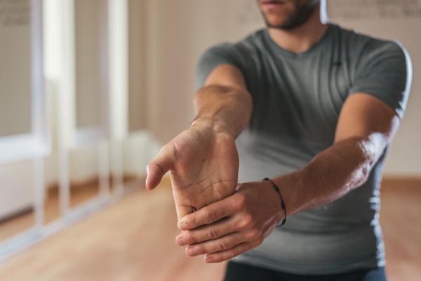 arm muscles - forearm extensor