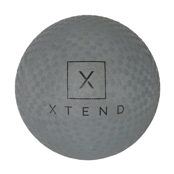 barre gift guide- xtend barre ball