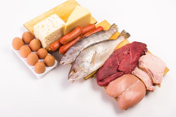 6 essential nutrients - protein