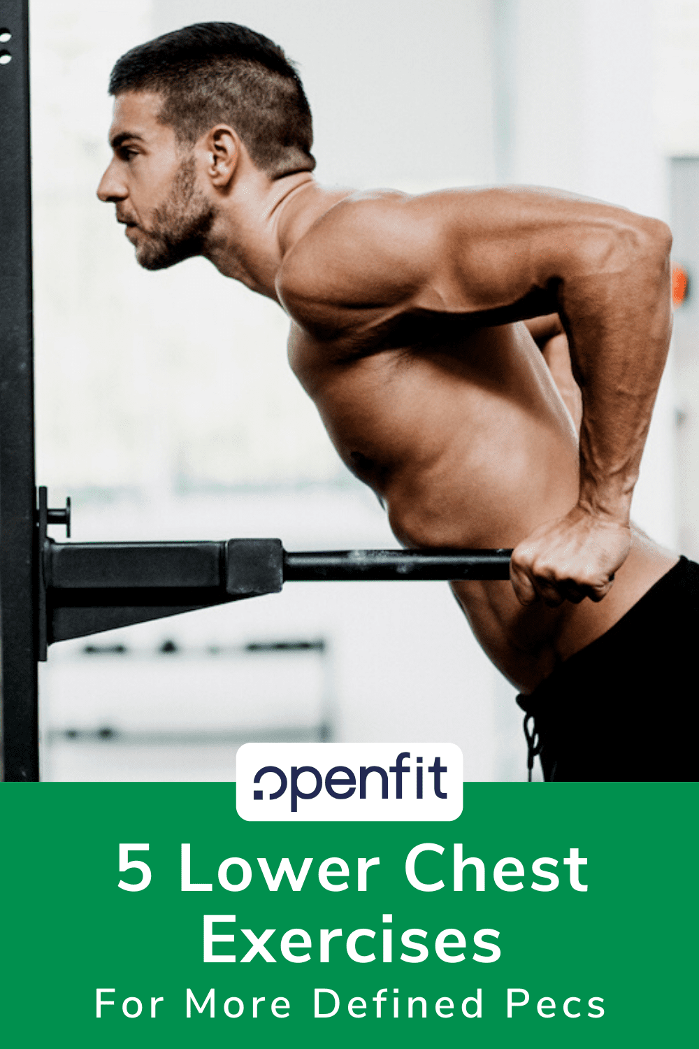 lower chest exercises pin image