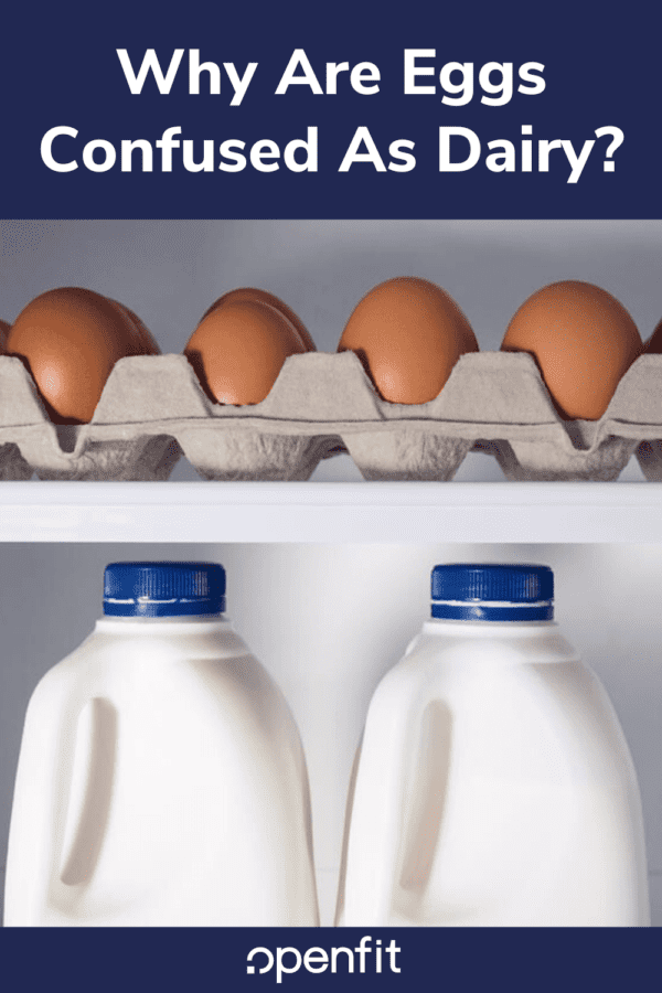 are eggs dairy - pin image