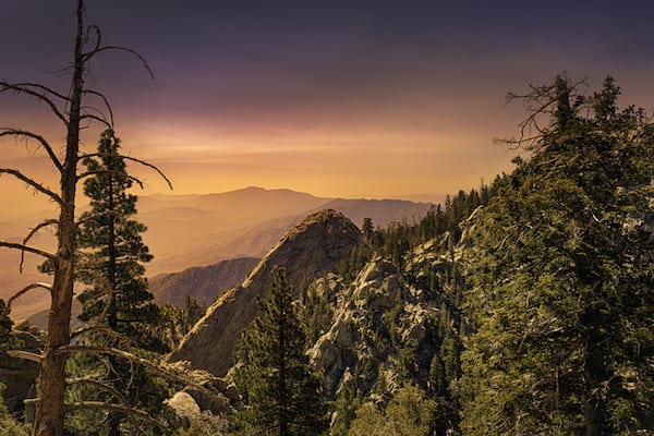 best hikes in california - san jacinto park