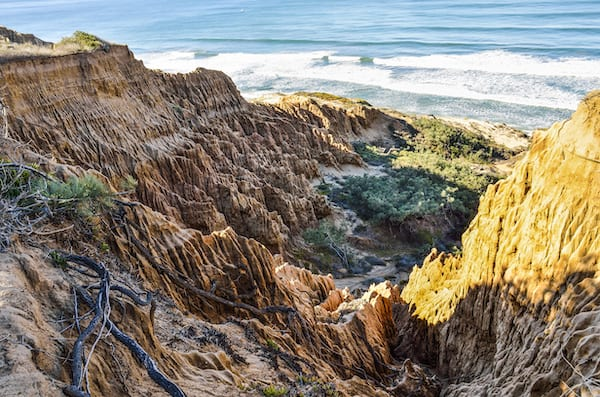 best hikes in california - torrey pines