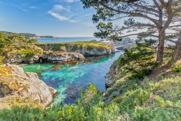 best hikes in california - point lobos