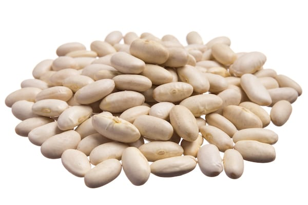 types of beans - navy beans
