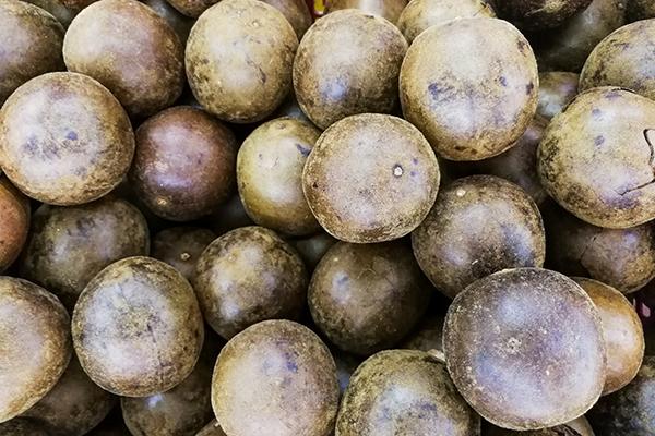large quantity of monkfruit | sugar free 3 approved stevia monkfruit