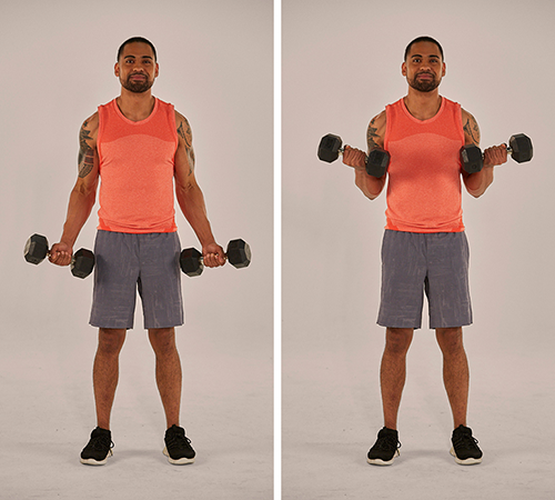 biceps curl demonstration | never miss a workout
