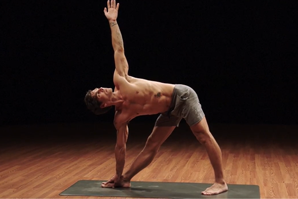 david essential vinyasa | yoga challenge