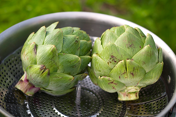 artichokes in steamer | how to cook artichokes