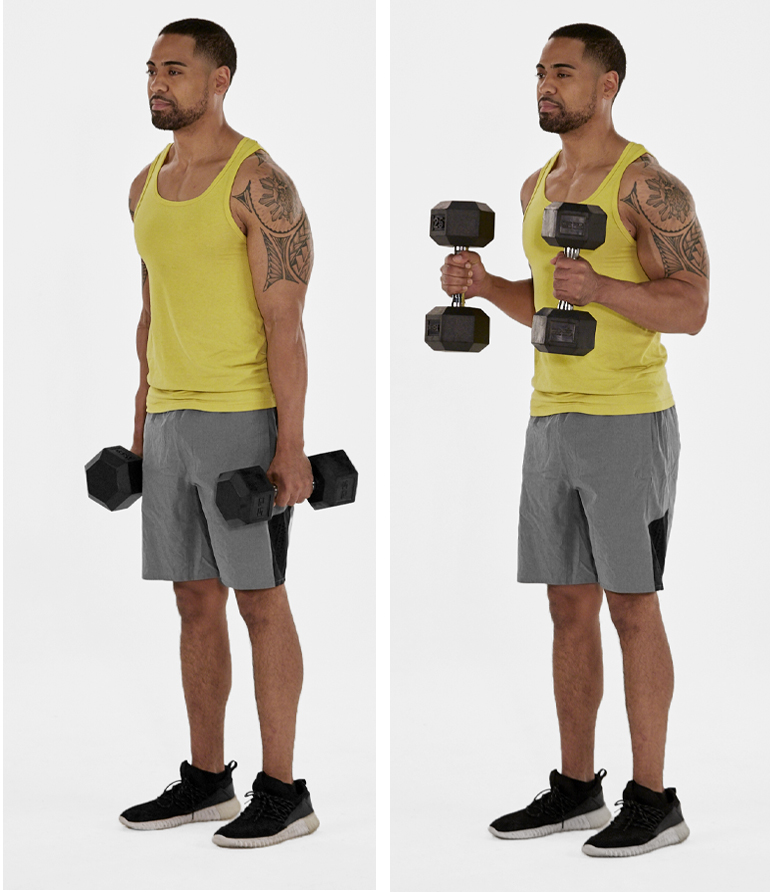 dumbbell hammer curl demonstration | arm workouts at home
