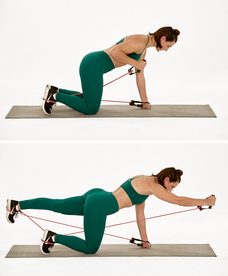 bird dog exercise | resistance band back exercises